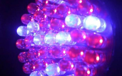 LED Light Therapy for Skin: Blue or Red?